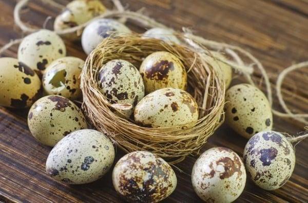 Máy lột trứng cút